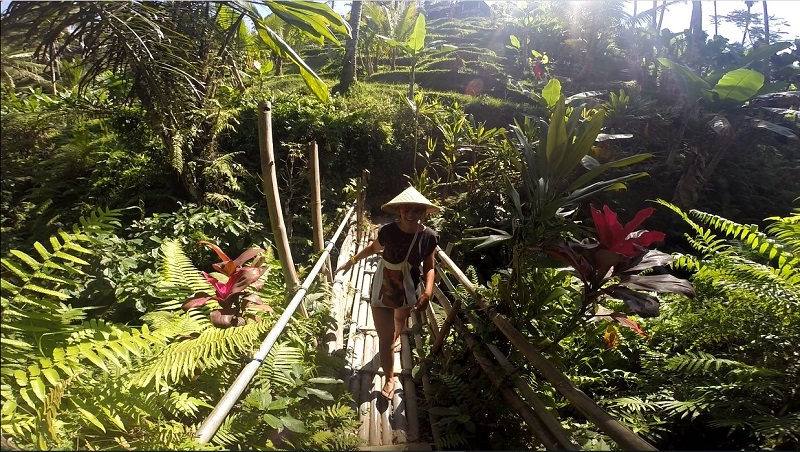 Things to do in Bali: 10 must do day trips