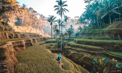 Bali weather: When is the best time to visit?
